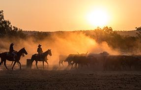 Horse riders in Australia.