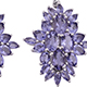 Catalina iolite earrings.
