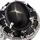 Indian black star diopside ring.