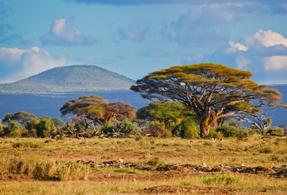 Star ruby mine from Kenya landscape.