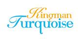 Kingman turquoise banner.