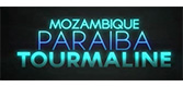 Mozambique Paraiba Tourmaline Logo