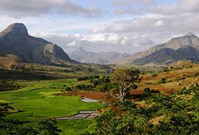 Madagascan landscape.