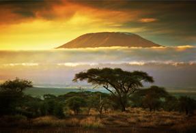 Tanzanian landscape.