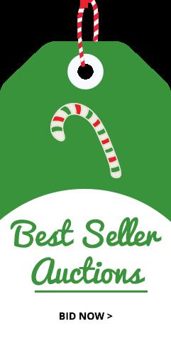 Best Seller Auctions